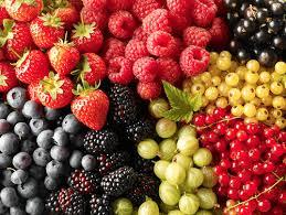 Image result for summer berries