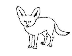 Arctic Fox Coloring Page Baby Pages Animal Jam Mebelmag