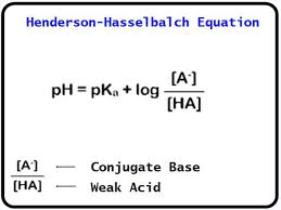 Henderson Hasselbalch Henderson Hasselbalch Equation Magdalene Project Org