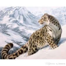 2018 snow leopard oil paintings by numbers wall art for home digital hand painted drawing on canvas oils 2018 from xj business 11 26 dhgate com on snow leopard canvas wall art with 2018 snow leopard oil paintings by numbers wall art for home digital