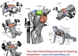 Chest Workout Chart Step By Step Best Chest Building Exercises Chest Workout Routine Chest