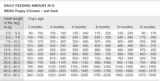 Dog Food Chart By Weight And Age Feeding Guidelines