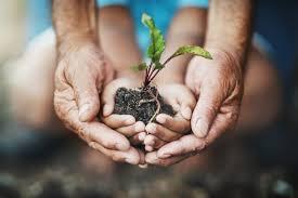 Earth Day 2021 Drive Thru Extravaganza – City of Lynnwood