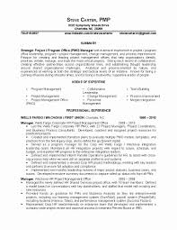 Project Management Skills Resume Sample Technical Project Manager