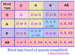 Parent And Child Blood Type Chart Blood Group Chart Parents Bedowntowndaytona Com