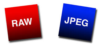 Image result for raw vs JPEG