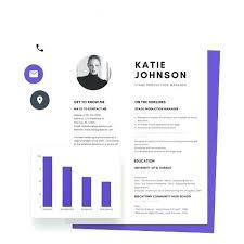 Resume Maker Online Enchanting Infographic Resume Generator Resume Maker Infographic Resume Maker