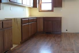 Kitchen Panels Doors Cabinets Drawer Kitchen Cabinets Lowes Flat Panels New Kitchen