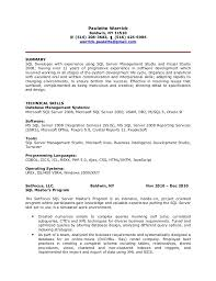 Sql Programmer Sample Resume