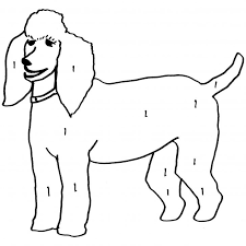 Small Picture French Poodle Coloring Page Elioleracom