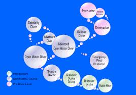 Padi Continuing Education Flow Chart