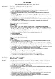 Group Leader Resume Example Delivery Team Leader Resume Samples Velvet Jobs 11
