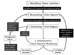 Conceptual Flow Chart Visitor Impact Assessment Flow Chart Conceptual Flow