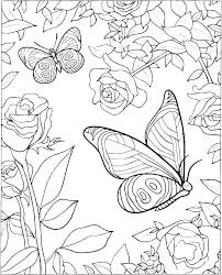 Butterflies Coloring Pages Free Butterfly Coloring Pages Life Cycle