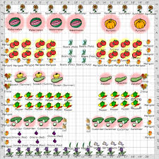 Small Picture vegetable garden layout Divas Garden 2012 Vegetable Garden
