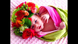 flower baby images flowers ideas