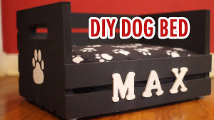 Diy Dog Bed Diy Dog Bed For Small Dogs Hgtv Handmade Youtube