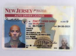 Jersey Dingofakes New nj –