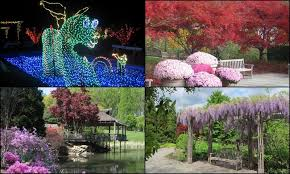 brookside gardens in wheaton maryland