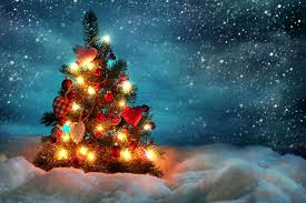 Christmas Tree Hd Hd Wallpapers Backgrounds Download
