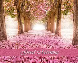 good morning wallpaper 1080p