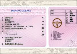 Licence Renew Photo Your Card Driving