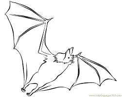 Small Picture Bats flying Coloring Page Free Bat Coloring Pages