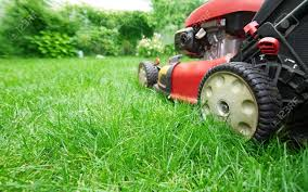 Image result for Lawn istock