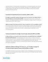 Cio Sample Resume Unique Chief Information Officer Resume Cio Resume Sample Free Resume