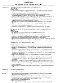 Information Technology Consultant Resume Samples Velvet Jobs