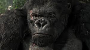 Risultati immagini per Il film King Kong