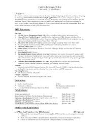 How To Describe Excel Skills On Resume Resume Excel Skills Enderrealtyparkco 8