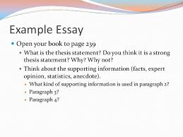 writing the argument essay example essay