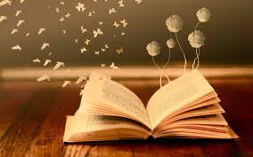 bokeh mood books read pages flowers erfly fantasy wallpaper