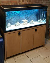 fish tank fluval roma 240 with fx6 filter