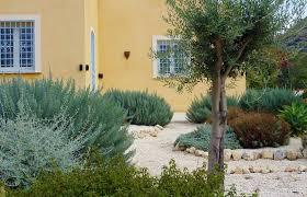 Mediterranean Garden Design Design Renovation In The South Of Fance Cool Mediterranean Garden Design Image