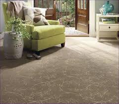 Bedroom Amazing Carpeting Color Visualizer What Color Carpet
