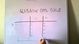 Glasgow Coma Scale Assessment Chart Glasgow Coma Scale Made Easy