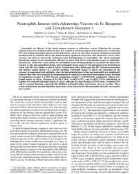 In Vitro and In Vivo Properties of Adenovirus Vectors with Increased  Affinity to CD46