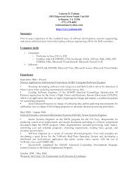 Resume Summary Of Skills Resume For Your Job Application