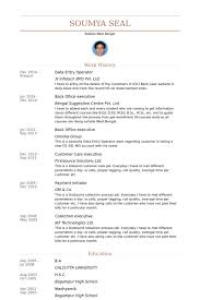 Data Entry Resume Fascinating Data Entry Operator Resume Samples VisualCV Resume Samples Database