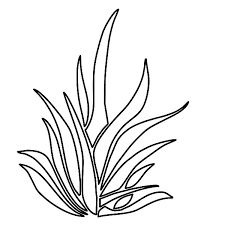Small Picture Grass Coloring Pages for Kids Color Luna