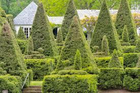 ladew topiary garden