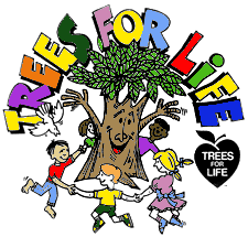 Essay on trees our best friend in marathi