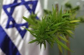 main psychoactive ingredient in marijuana