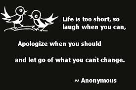 Apologize Quotes Enchanting 48 Best Apology Quotes Sayings