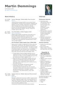 Senior Manager Resume Samples Visualcv Resume Samples Database