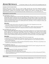 One Page It Resume Examples Awesome Image 10 It Project Manager