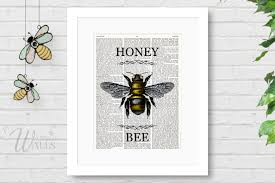 honey bee art dictionary art print honey bee drawing
