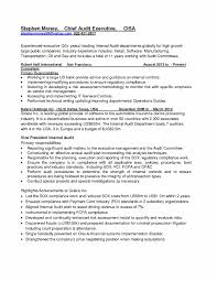 It Auditor Resume Internal Audit Awesome Collection Sample Of 16